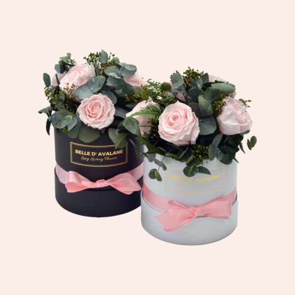 Roses in a box L Ø15 cm Bouquet-wit-en-zwart-box-lichtroze-rose
