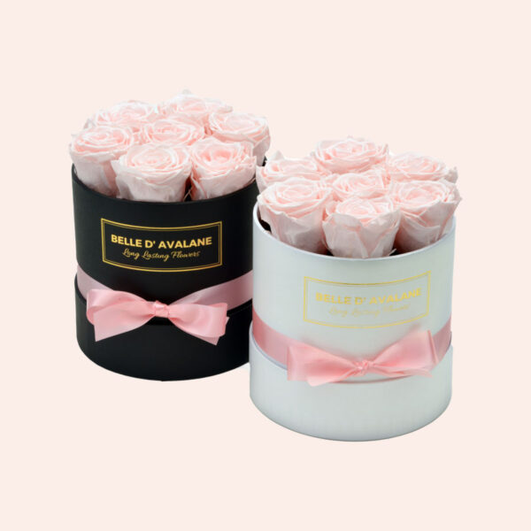 Roses in a box L Ø15 cm-wit-en-zwart-box-lichtroze-rose