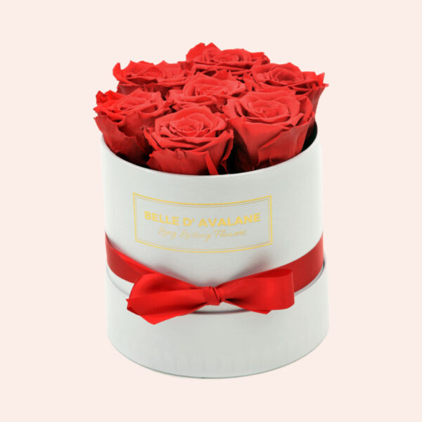 Roses in a box L Ø15 cm-wit-box-rood-rose