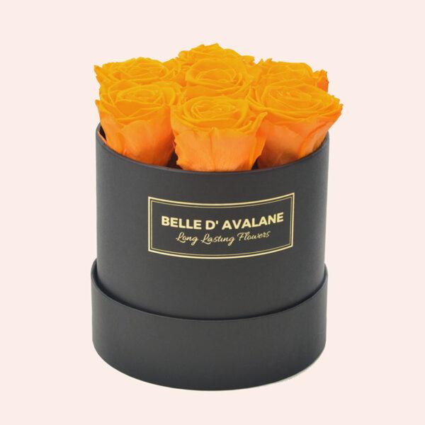 Roses in a box L Ø15 cm