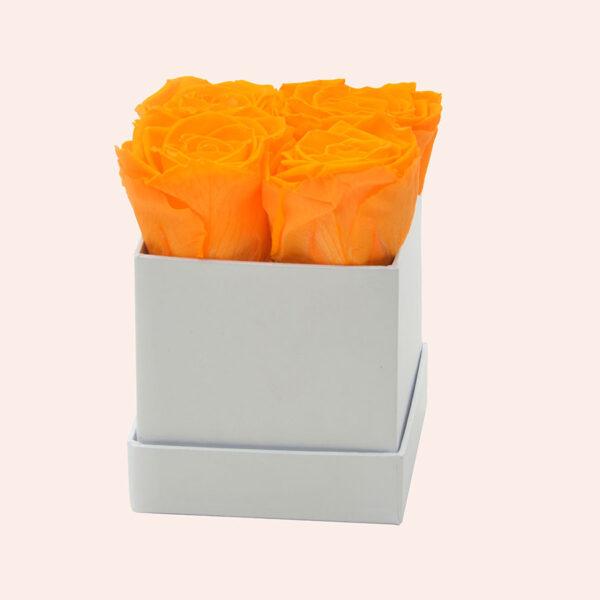 Roses in a box M vierkant-wit-box-oranje-rose