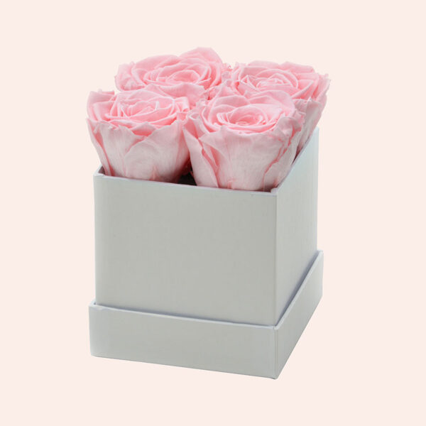 Roses in a box M vierkant-wit-box-lichtroze-rose