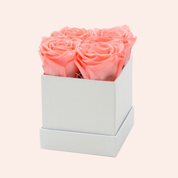 Roses in a box M vierkant-wit-box-orange-rose
