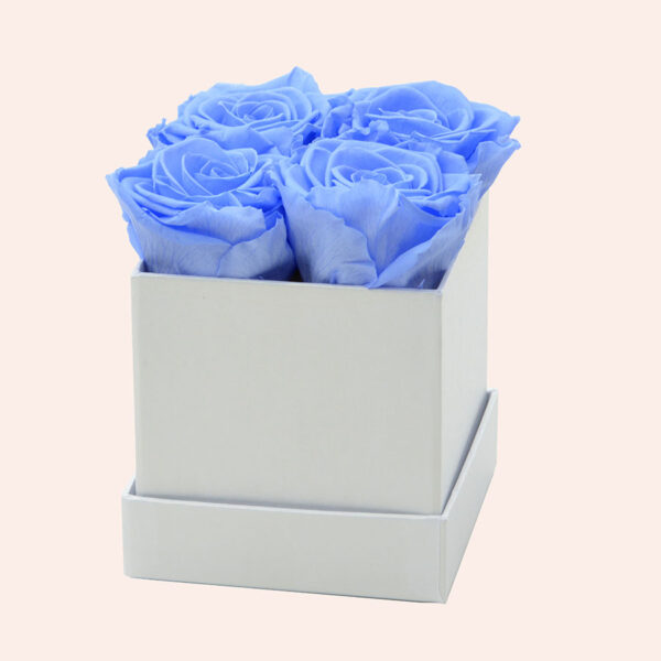 Roses in a box M vierkant-wit-box-lichtblauw-rose