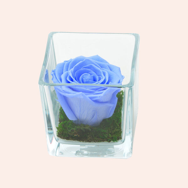 Roos in glas S vierkant-lichtblauw-rose
