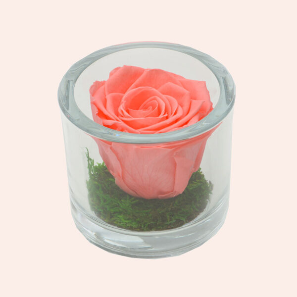 Roos in glas S rond-roze-rose