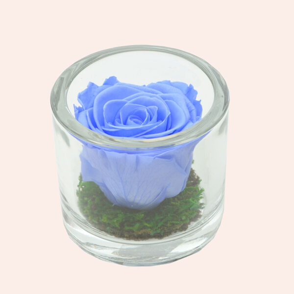 Roos in glas S rond-lichtblauw-rose