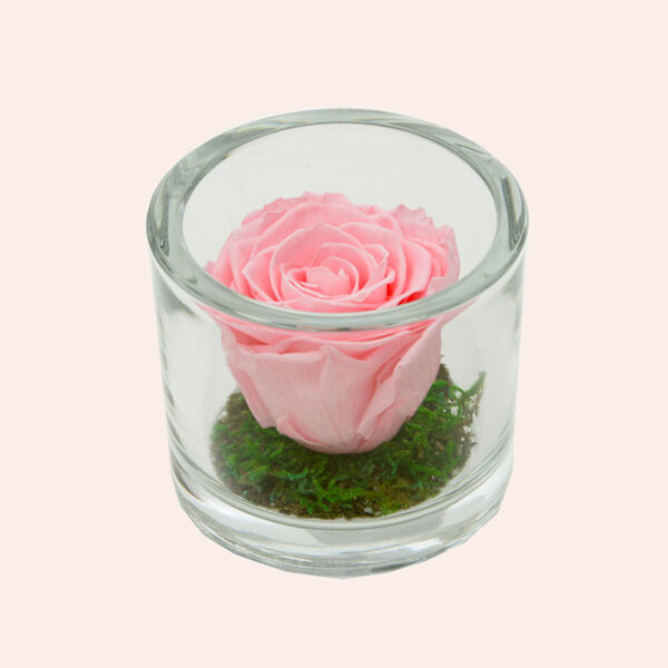 Roos in glas S rond-lichtroze-rose