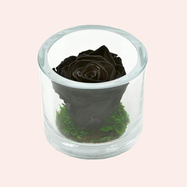 Roos in glas S rond-zwart-rose