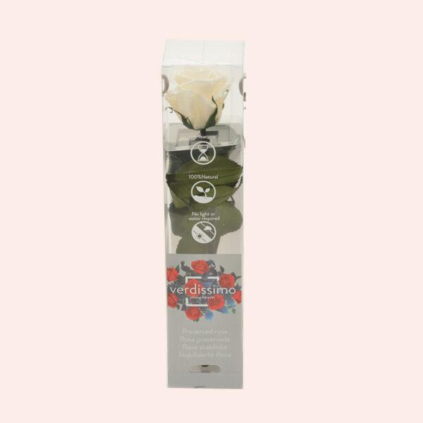 Roos op steel Verdissimo Mini 27,5cm