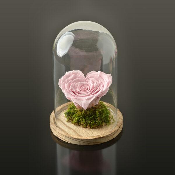 Hartvormige roos 'LOVE' XXL-bruine-voet-roze-rose