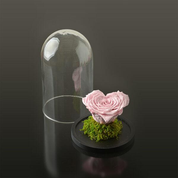 Hartvormige roos 'LOVE' XXL-zwarte-voet-roze-rose