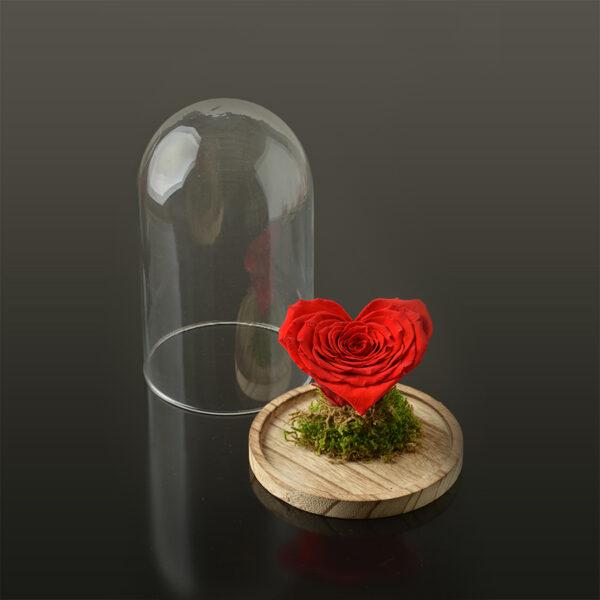 Hartvormige roos 'LOVE' XXL-bruine-voet-rood-rose